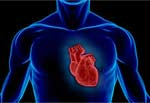 Час доби впливає на ймовірність серцевого нападу