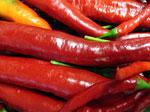 Жгучий перец снижает кровяное давление