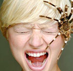 Гормону стресса оказалось 500 миллионов лет