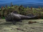 Самка рода Materpiscis и детеныш, прикрепленный к ней пуповиной. Реконструкция обычной сцены, имевшей место 380 млн лет назад