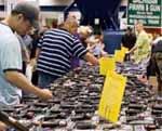 Техасским учителям разрешили носить оружие в школу  Фото с сайта lenta.ru